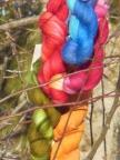 Sheep Uy Colors- Cabito